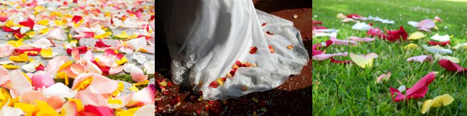 Rose petal wedding confetti | Kelly Chandler Consulting